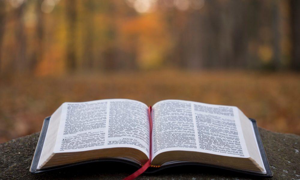 Bible Study – online!
