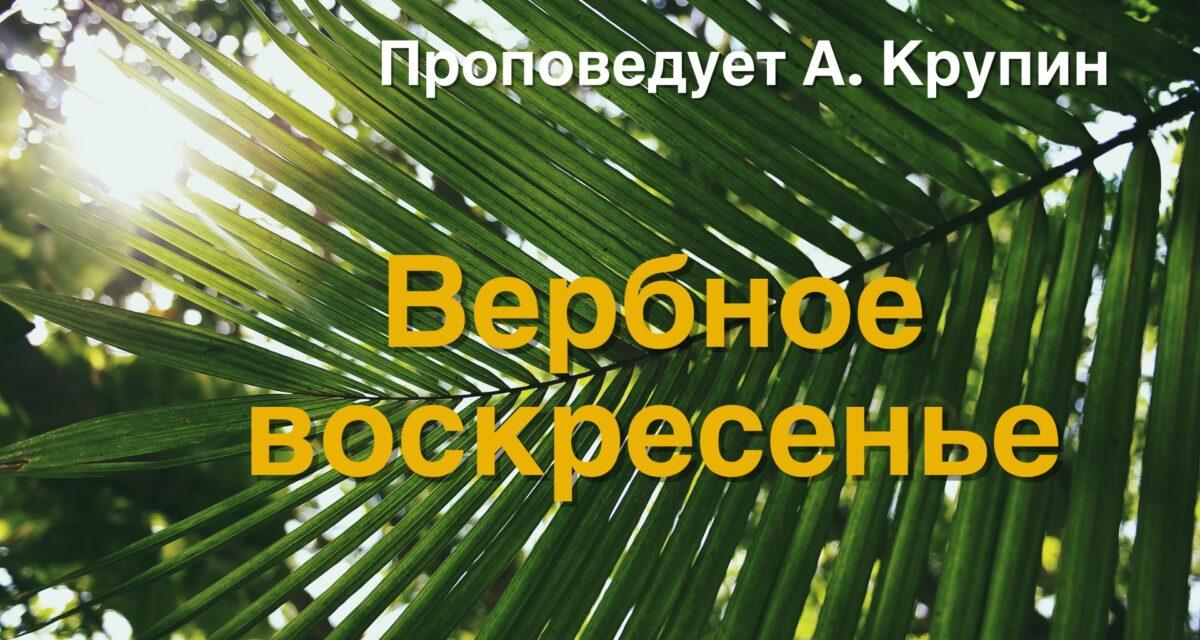 Palm Sunday – 28 March 2021